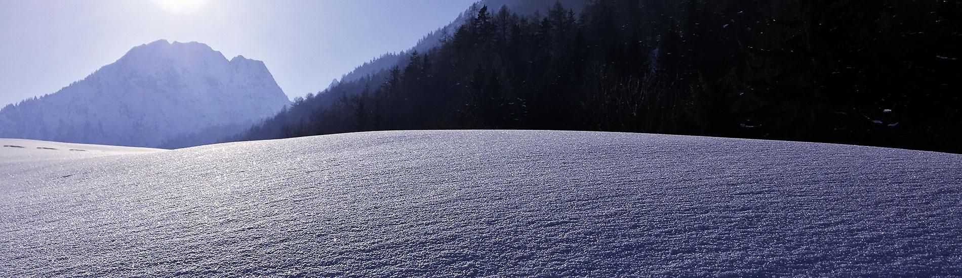 Planajeur sous la neige